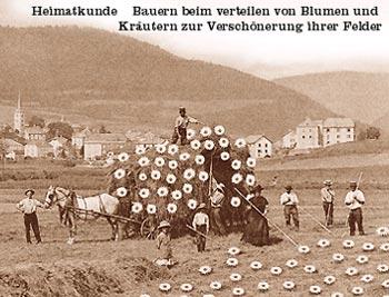 bauern_blumen.jpg